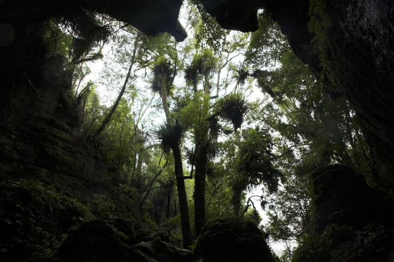 Mokau – Waitomo – Paeroa